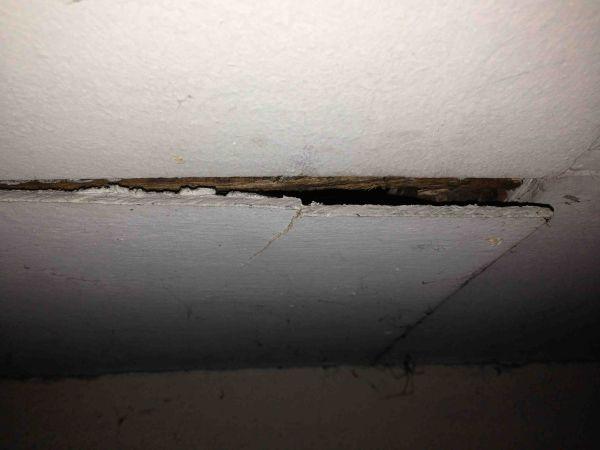 asbest plafondplaten in schuur. Black Bedroom Furniture Sets. Home Design Ideas