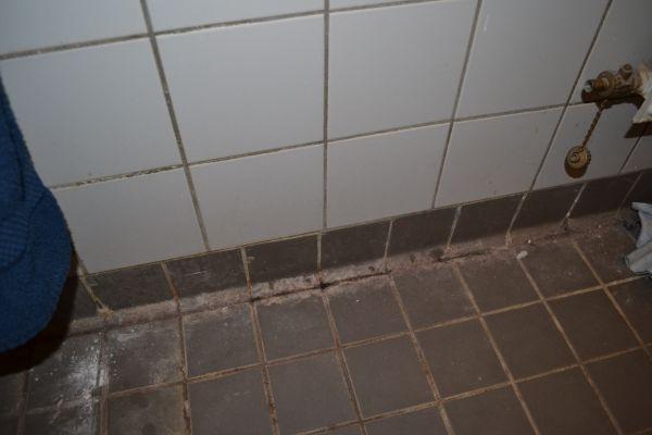 Witte Schimmel Badkamer - Badkamer Schimmel Voorkomen Schimmel op je ...