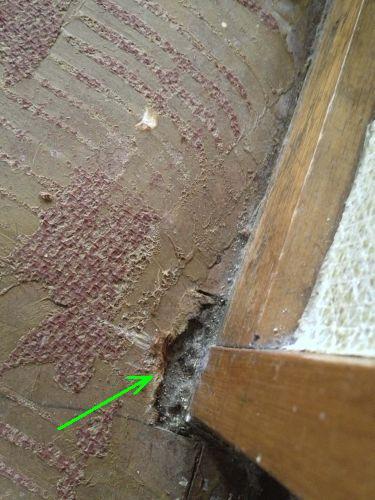 Is Dit Asbest Op De Vloer