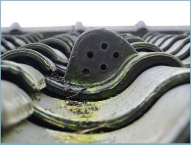Badkamer Ventilator Dak : Badkamer ventilator dak u2013 devolonter.info