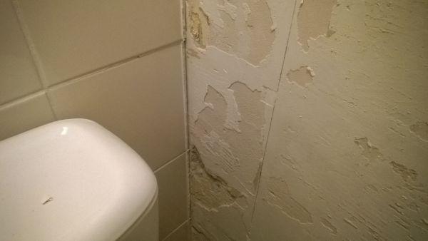 Wc muur egaliseren tegelen - Muur wc ...