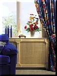 radiator-ombouw