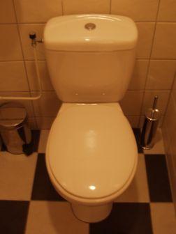 Voorkeur WC Pot deksel niet te verwijderen? YX69