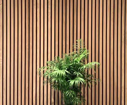 Wand hout.jpg