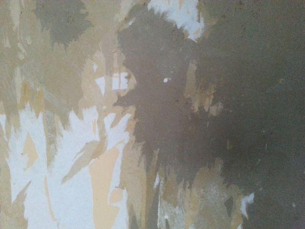Bekend Gipswand beschadigd TR59