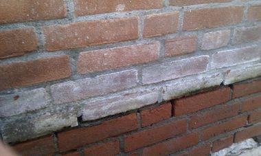 Stenen Muur Wit : Witte groene aanslag op muur verwijderen