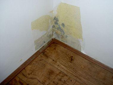 Schimmel op muur in huiskamer