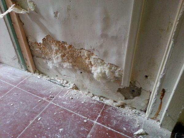 Schimmel Verwijderen Muur : Schimmel in muur achter gipsplaat