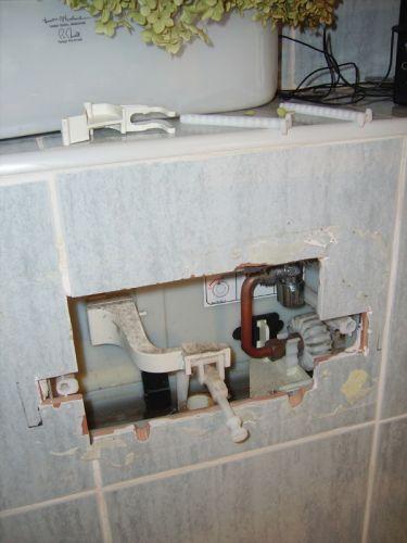 geberit toilet flush instructions