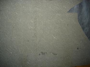 asbest platen dakbeschot. Black Bedroom Furniture Sets. Home Design Ideas