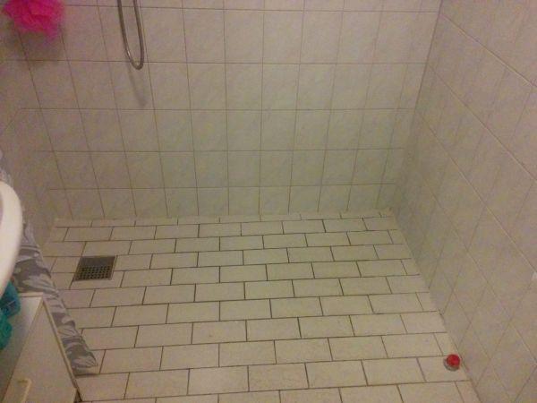 Badkamer vloer douche badkamer met houten vloer vervangen voor hart douche koop goedkope loten - Badkamer vloer ...