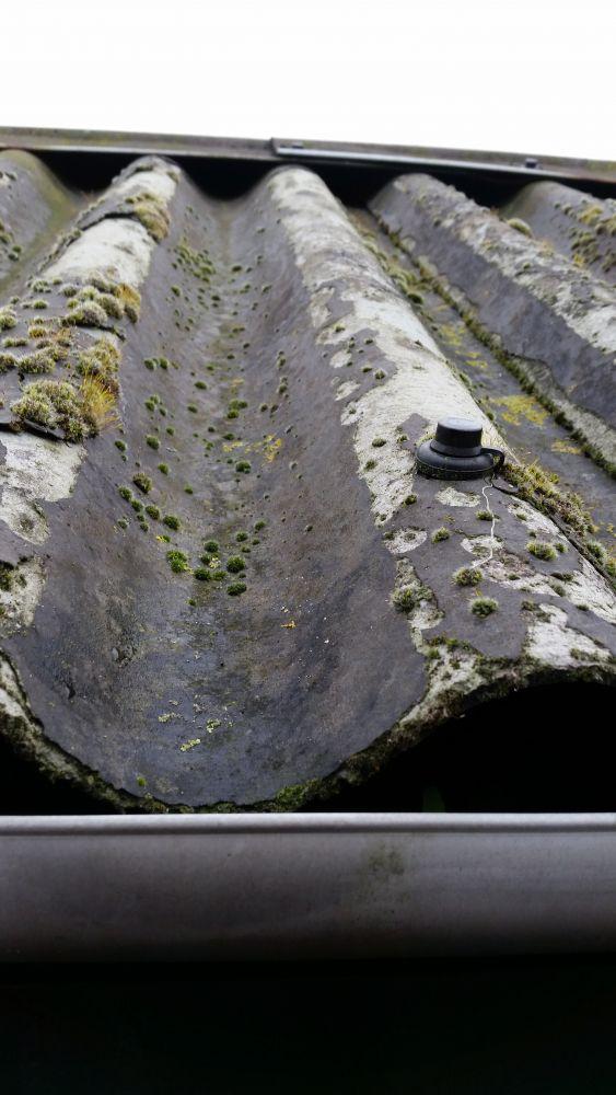 Favoriete Is dit asbest? oud tuinhokje golfplaten QJ26
