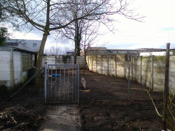 Betonnen schutting verven for Goedkoop laten behangen