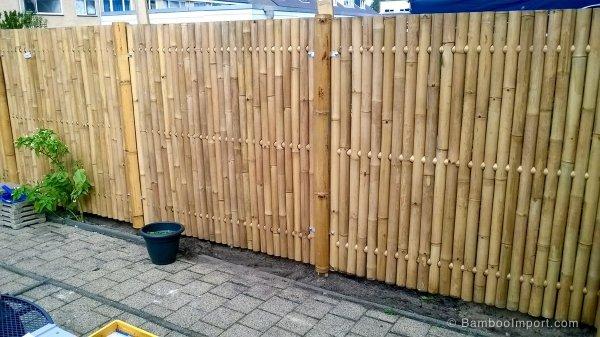 Bamboe schutting zetten for Schutting zetten