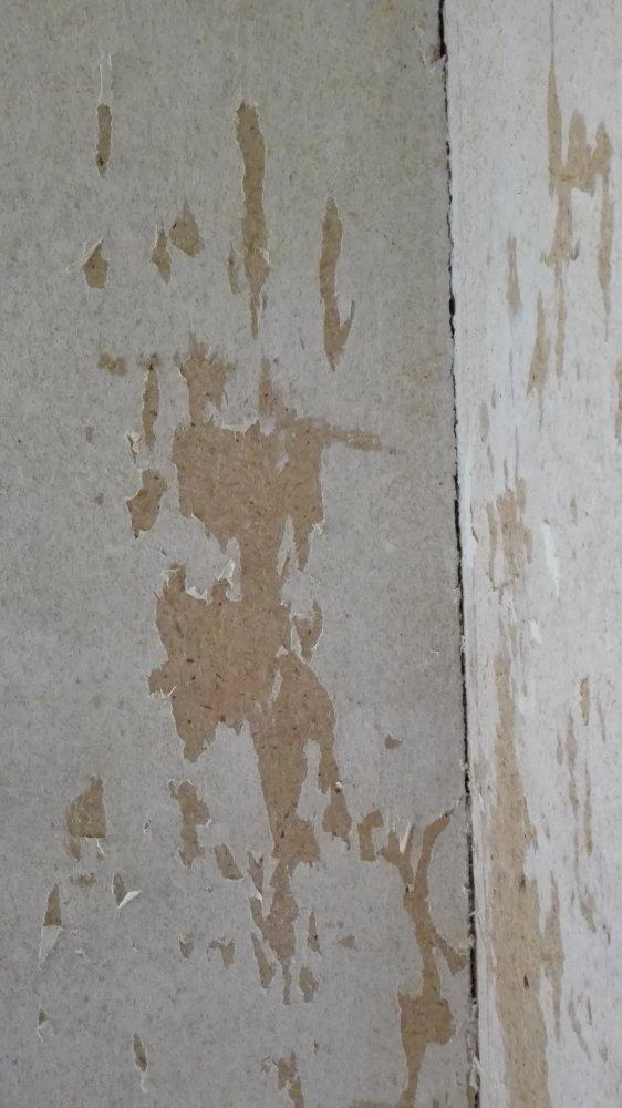 Genoeg Muur afwerken (geen behang) &MV63