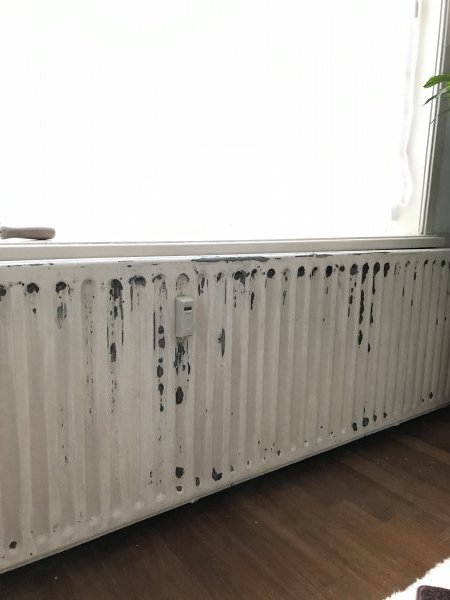 Goede Afbladderende radiator- beste aanpak DR-22