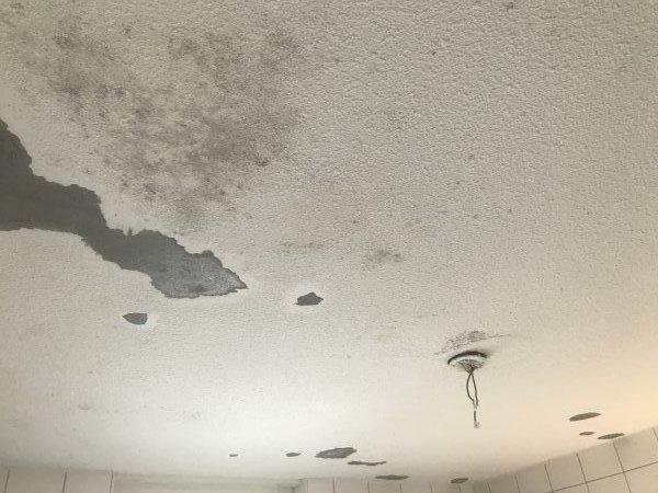 Badkamerplafond - schimmel - structuurverf