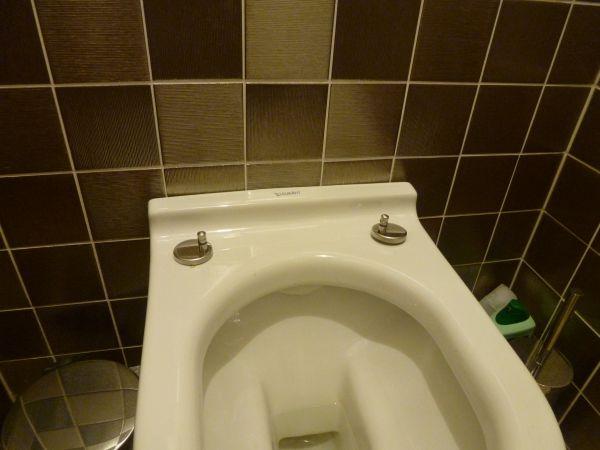 Duravit Wc Bril Vervangen.Scharnier Toiletzitting Verwijderen