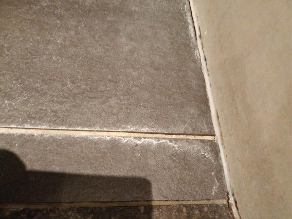 Aanslag op vloertegels badkamer verwijderen.