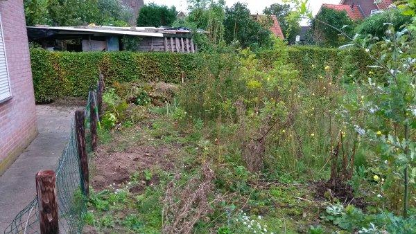 Wateroverlast Tuin Kleigrond : Kleigrond tuin voorbereiden
